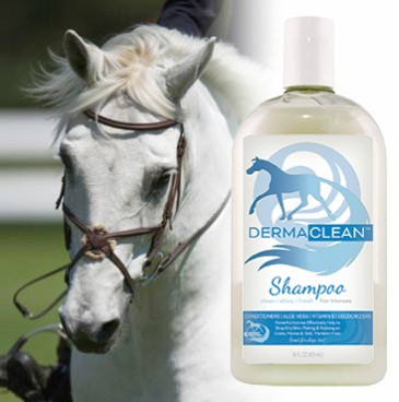 Derma Clean Shampoo für Pferde und Hunde