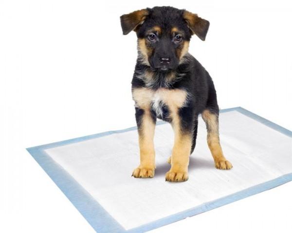 Puppy Pads Trainingsmatte S